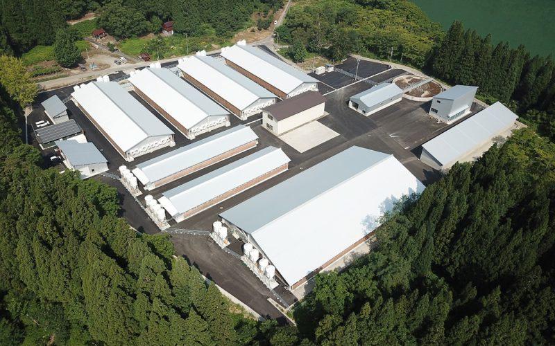 ㈲吉野ジーピーファーム 養豚飼育管理施設建物建築工事(大野郡白川村)